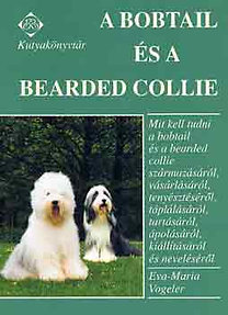 A Bobtail és a Bearded Collie